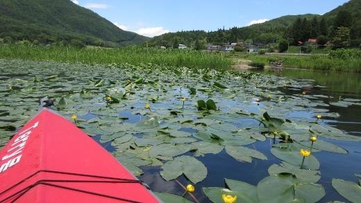 6_15木崎湖で森さんとカヌー (5) (520x293)