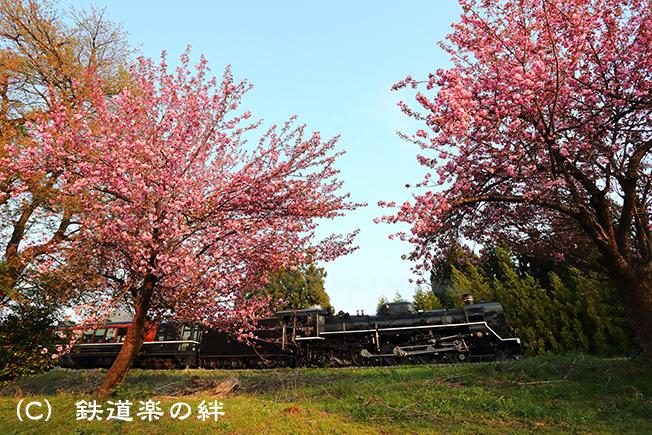20170430鹿瀬021DX2