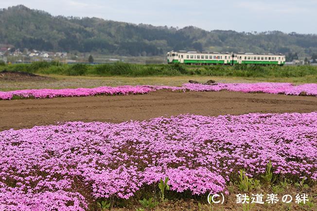 20170506根岸011DX2