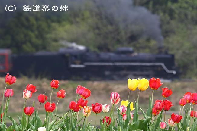 20170507上野尻1DX2