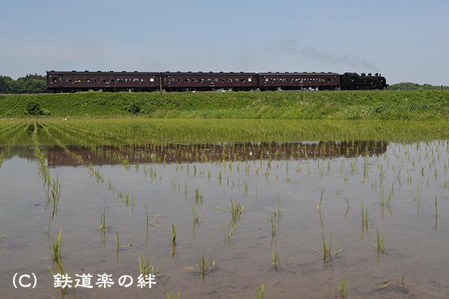 20170521根岸021DX2