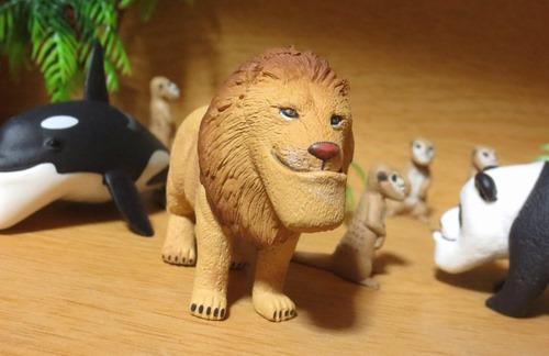 11_ライオン