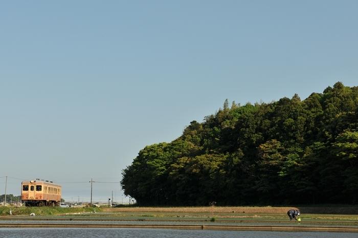 DSC_9988.jpg