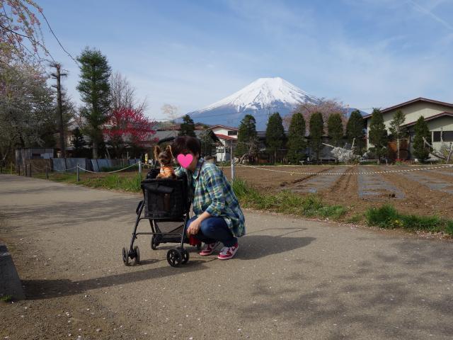 b_028富士山と二人2