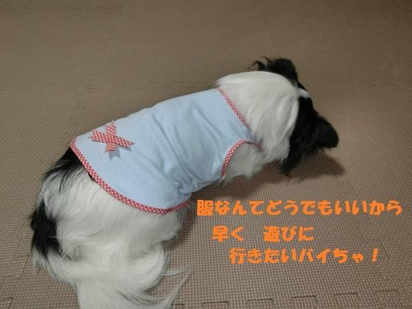 CIMG2023夏服5