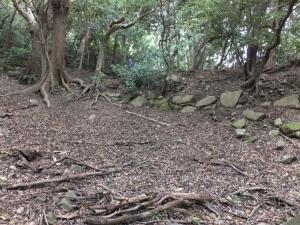立花山城/12登り石垣2