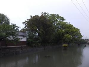 [筑後]福島城/文化池