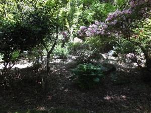 勝尾城・筑紫氏館/09館庭園