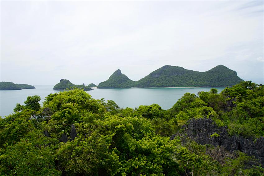 サムイ島旅行記 3日目 アントン海洋国立公園5