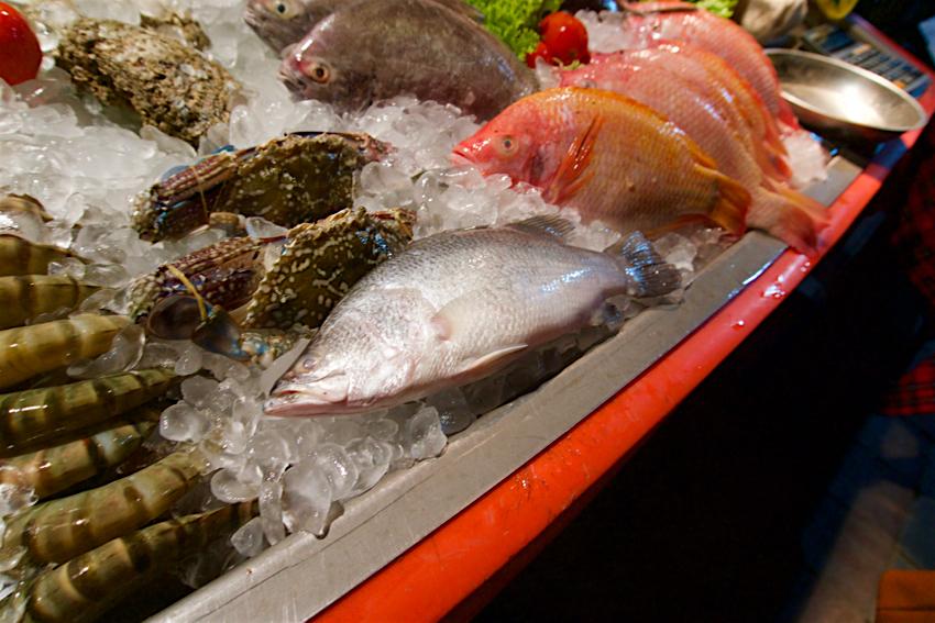 サムイ島旅行記 3日目 ANONG RESTAURANT 魚1