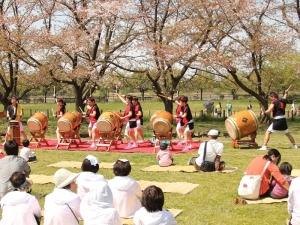 170416さくらそう祭り_和太鼓