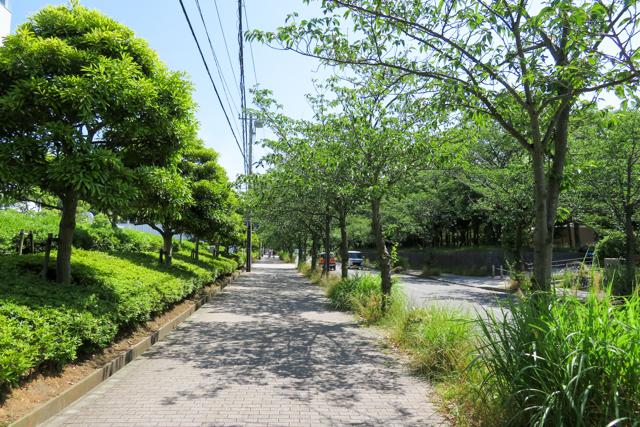 久里浜(4)