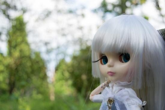 DSC_0142-38.jpg