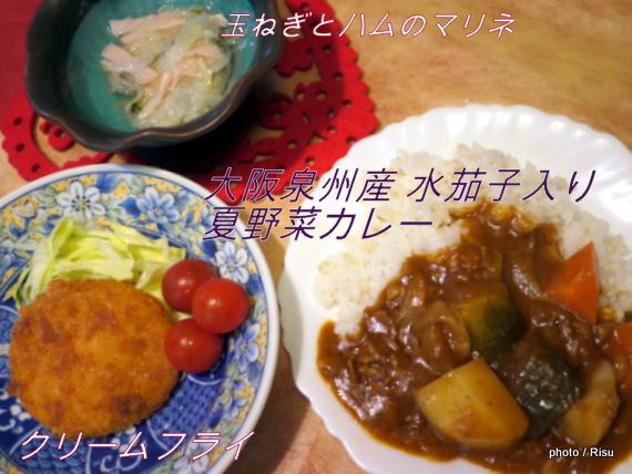 大阪泉州産 水茄子入り 夏野菜カレーセット 完成|わんまいる 旬の手作りおかずセット「健幸ディナー