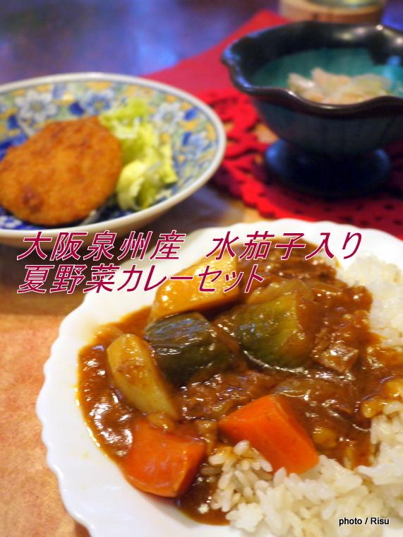 大阪泉州産 水茄子入り 夏野菜カレーセット|わんまいる 旬の手作りおかずセット「健幸ディナー」