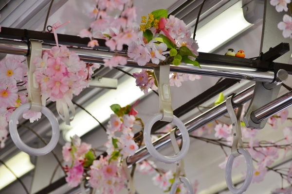 2017年4月10日 上田電鉄別所線 1000系1003編成