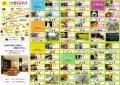web-EPSON665.jpg