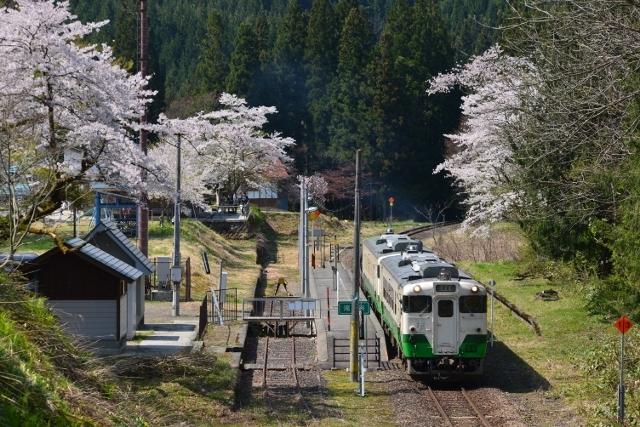 29-04-30 只見線桜 nik 017 (640x427)