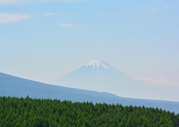 2富士山 DSC_0208