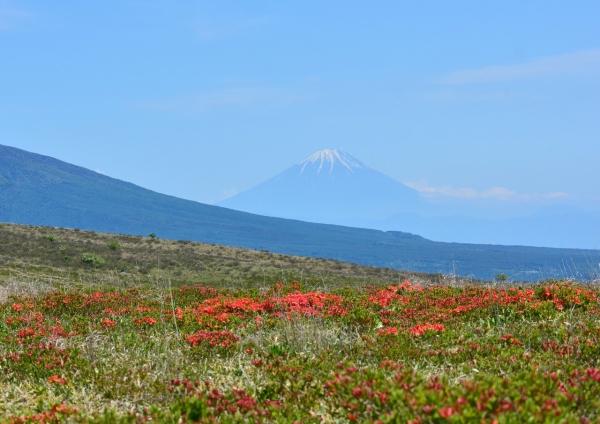 3富士山 DSC_0390