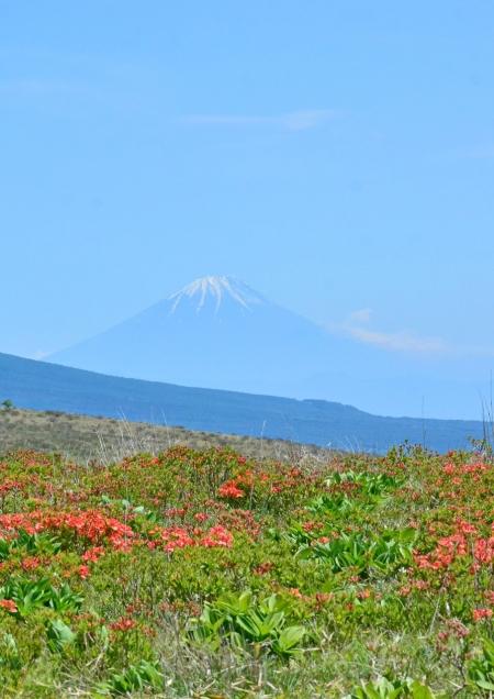 1富士山 DSC_0257