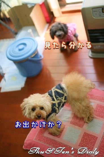 001aIMG_3404.jpg