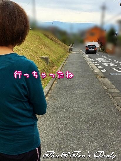 006aIMG_5724.jpg