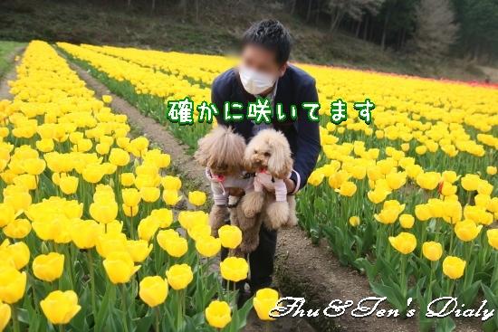 010aIMG_2933.jpg