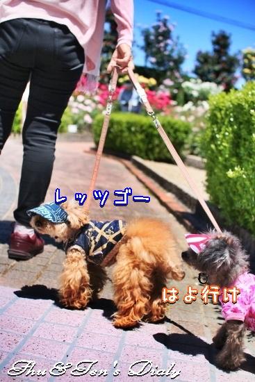 010aIMG_3420.jpg