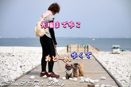 013aIMG_3776.jpg