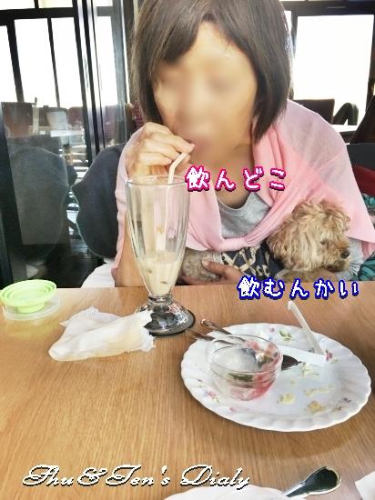 013aIMG_5992.jpg