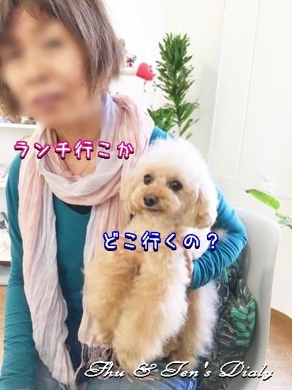 013aIMG_6250.jpg