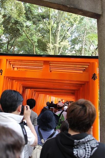 201705京都 (1)
