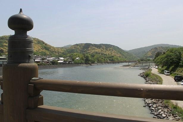 201705京都 (17)