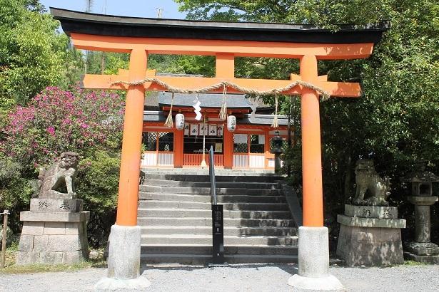 201705京都 (24)
