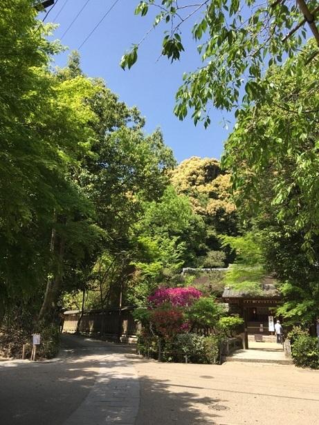 201705京都スマホ (23)