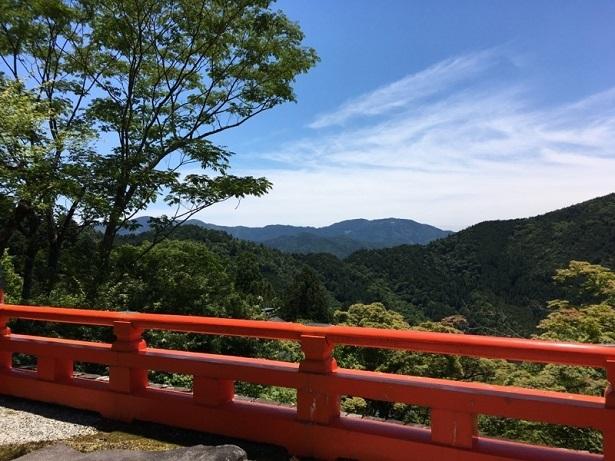 京都1706 (25)
