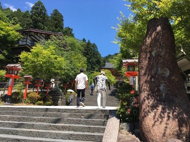 京都1706 (22)
