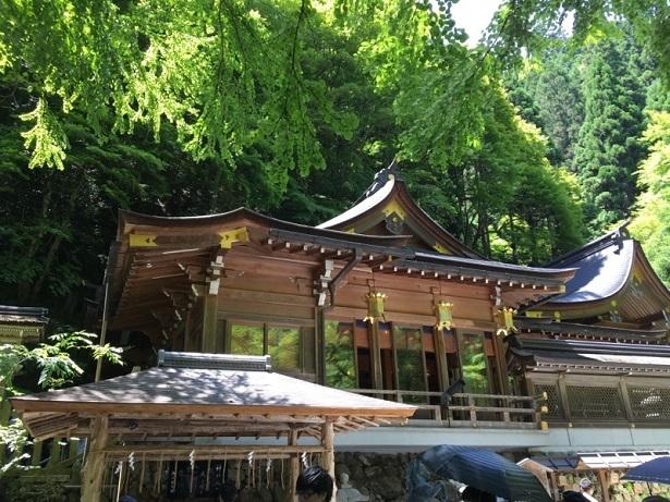 京都1706 (10)