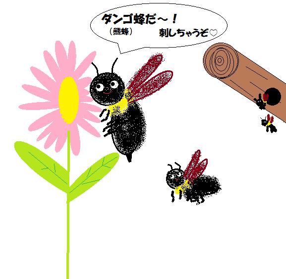 13ダンゴ蜂