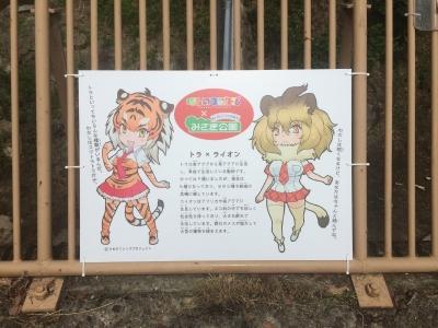 misaki16.jpg