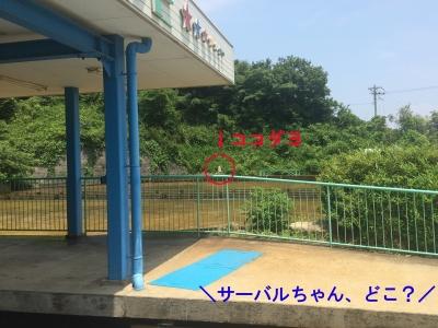 misaki27.jpg