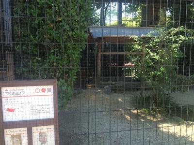 okazaki7.jpg