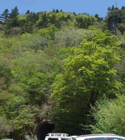西門山トンネル登山口