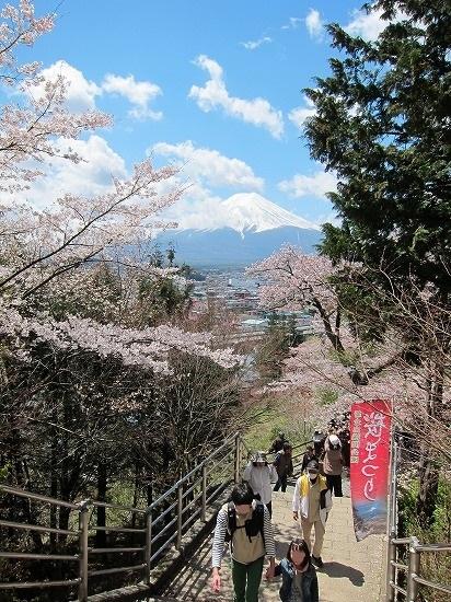 浅間神社階段からの富士山2
