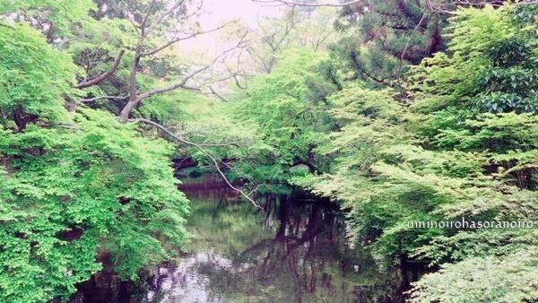 金鱗湖 (8)