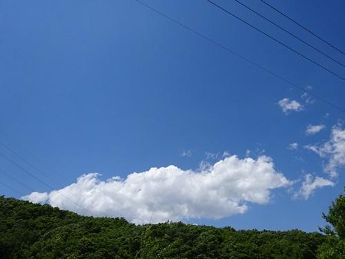DSC07709.jpg
