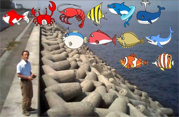 魚など配置