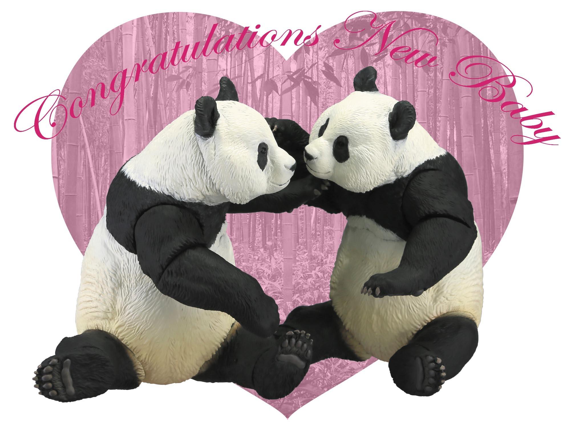 panda_blog1.jpg