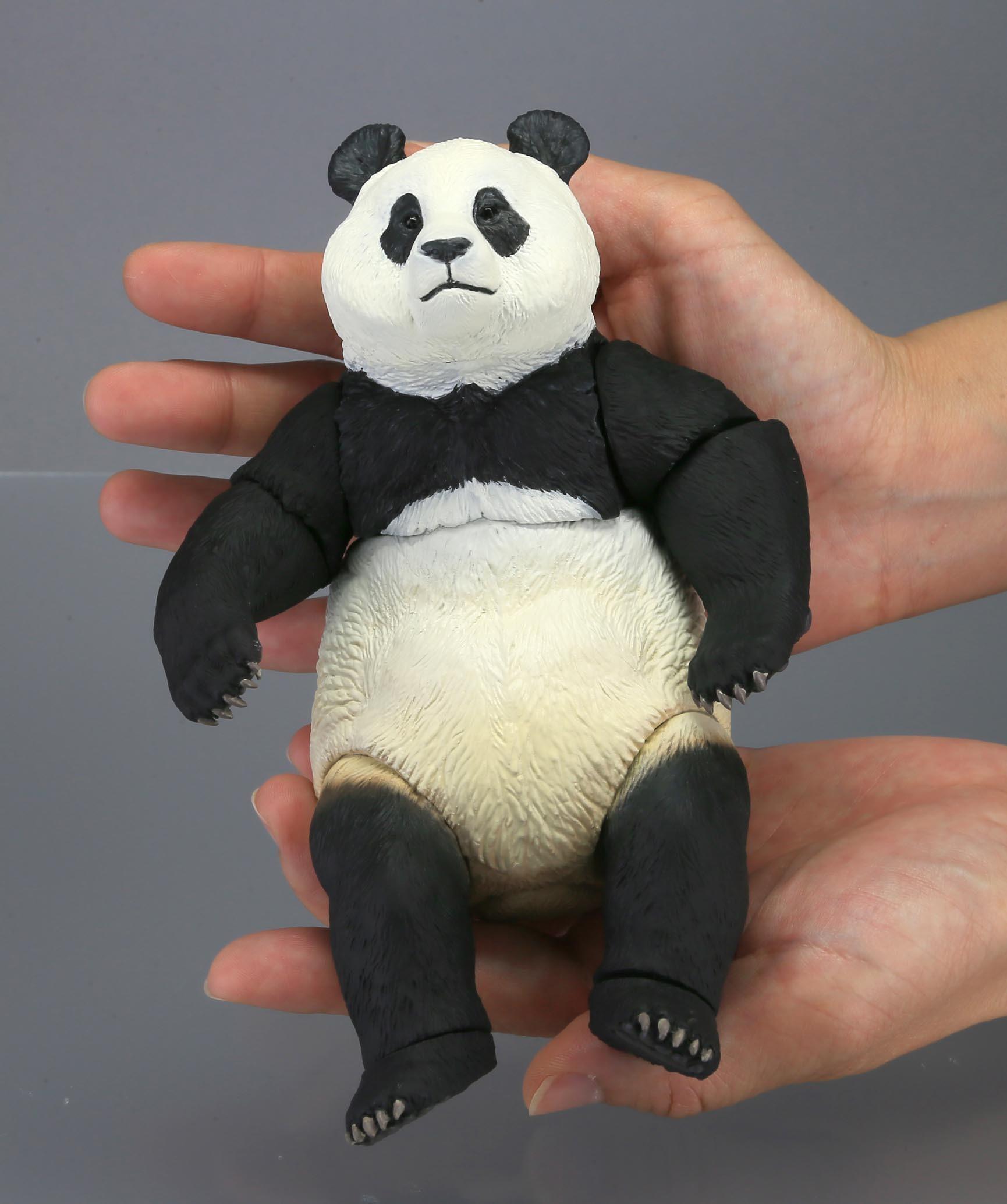 panda_blog4.jpg